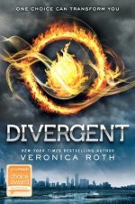Divergent by New York Times Bestselling Author, Veronica Roth book cover. - Dark sky and city skyline background - a fire burning inside a circle in the center
