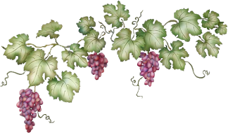 GrapevineClipart