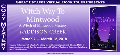 WITCH WAY TO MINTWOOD BANNER 184